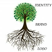 Logo Contests….Because Not All Graphic Designers Will Understand Your Concept